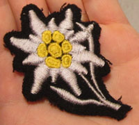 SS Mountain Troop's Cap Edelweiss