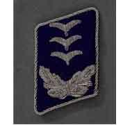 Luftwaffe Medical Hauptmann Tab