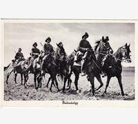 Six Men on Horses Postcard