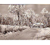 Photo Winter Scene of Ski School Postcard
