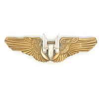 US wings Aerial Gunner WWII