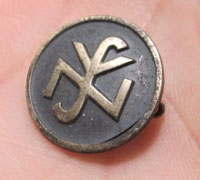 Welfare Organization Pin