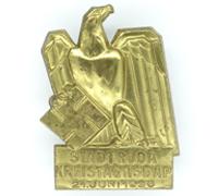 NSDAP Kreistag Stadtroda Tinnie 1936