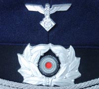 TENO Officer Visor Insignia